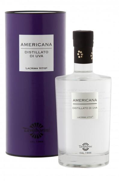 """Grappa Americana - Distillato di Uva Americana """"Lacrima Vitis"""""""